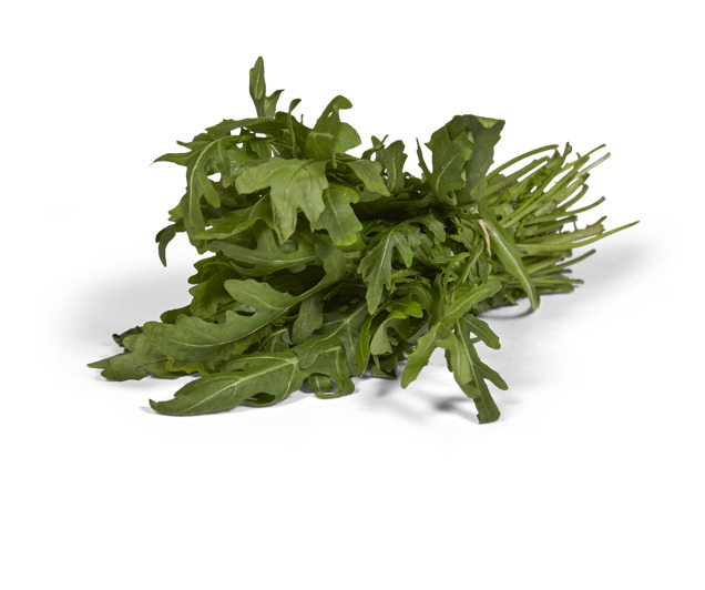 Rucola bussel